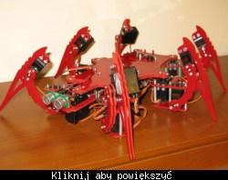 Przykładowy hexapod zbudowany na serwach modelarskich
