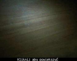 IMG_4c6ad5e11a785151.jpg
