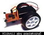 Przyk�adowy robot-�wiat�olub